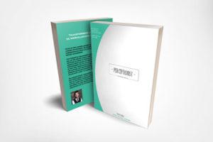 Perceptionist ebook: Transformeer de werkelijkheid.